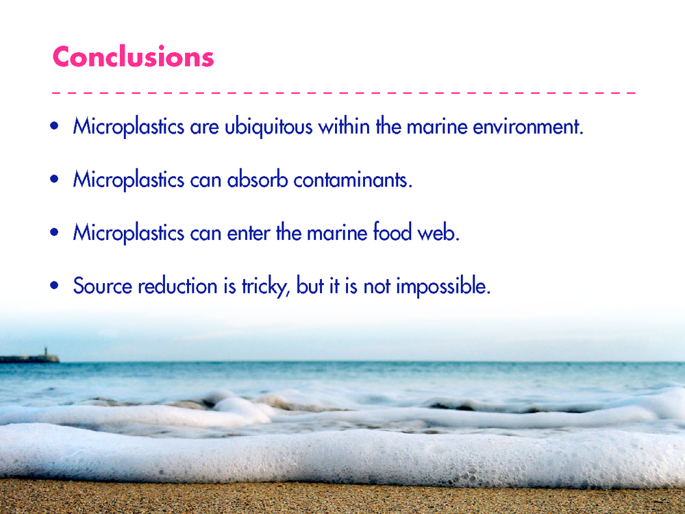 Dave_microplastics_presentation_Page_21.png