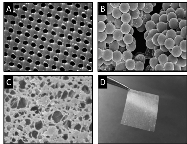 LayerForm drug coatings are highly conformal over various substrates:  (A) Nylon mesh,  (B)  PLA microspheres,  (C) Porous PLGA.LayerForm coatings are may be fabricated as freestanding films  (D) .
