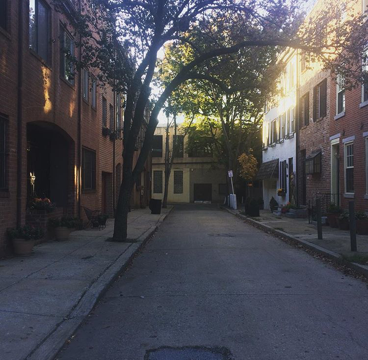 A charming street in Philly that housed one of my many Airbnb's