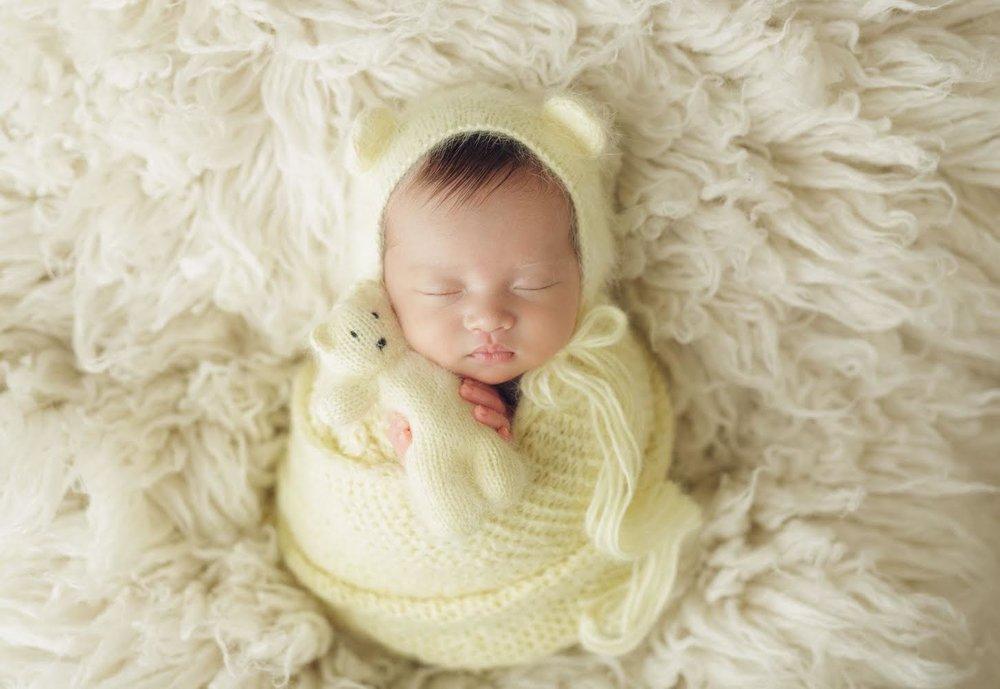 infant bear.jpg