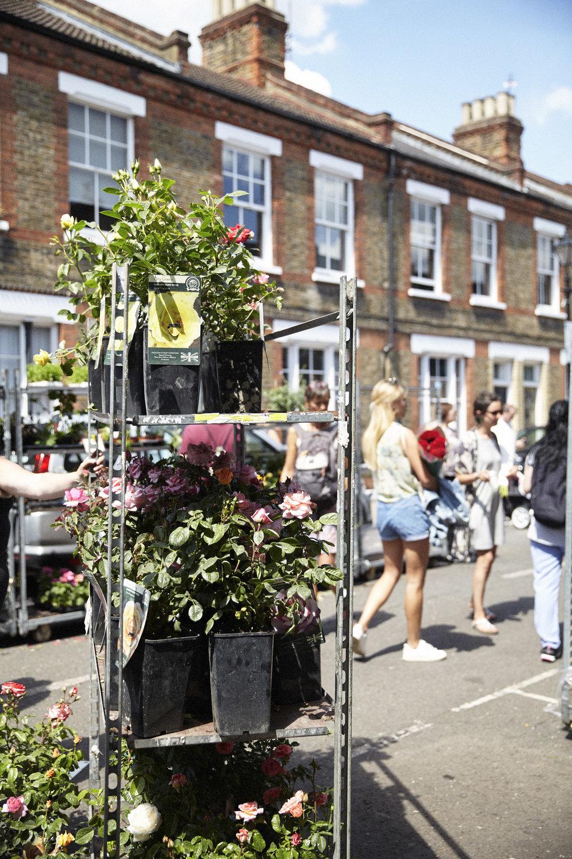 FlowerMarket44.jpg