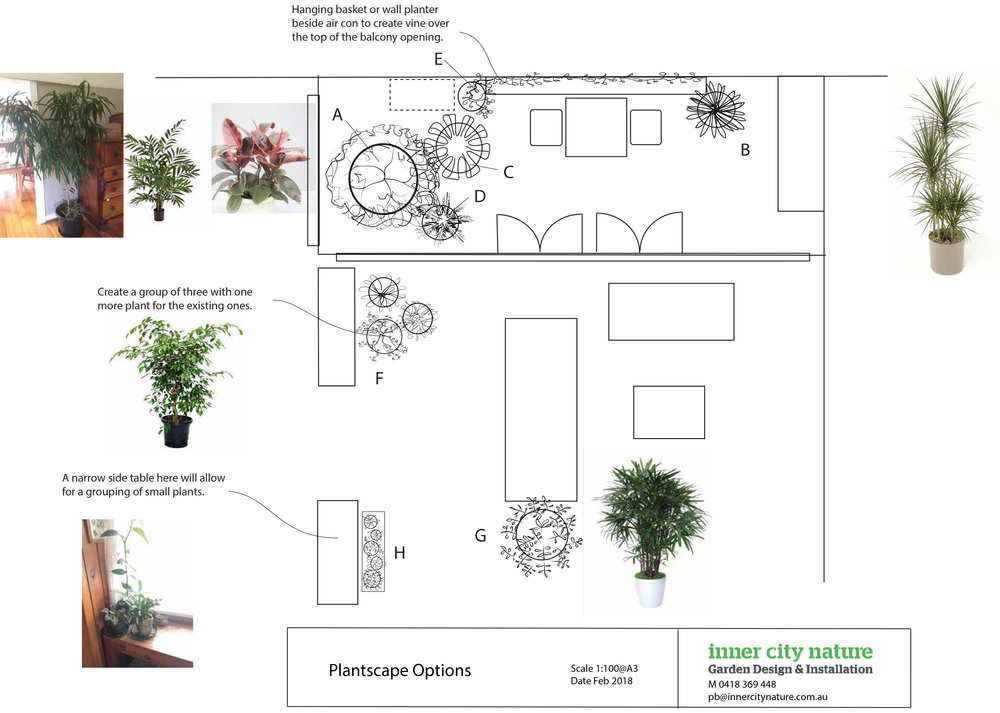 Plantscape Sketch.jpg