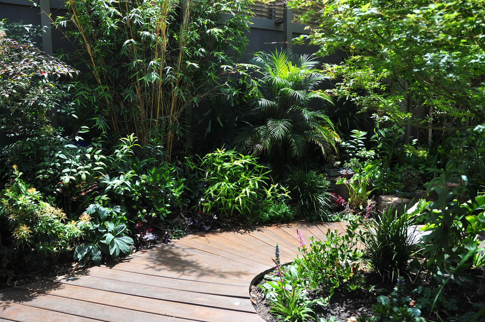 Tropical Asian Garden.jpg