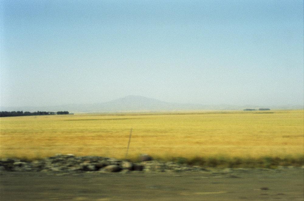afrika29.jpg