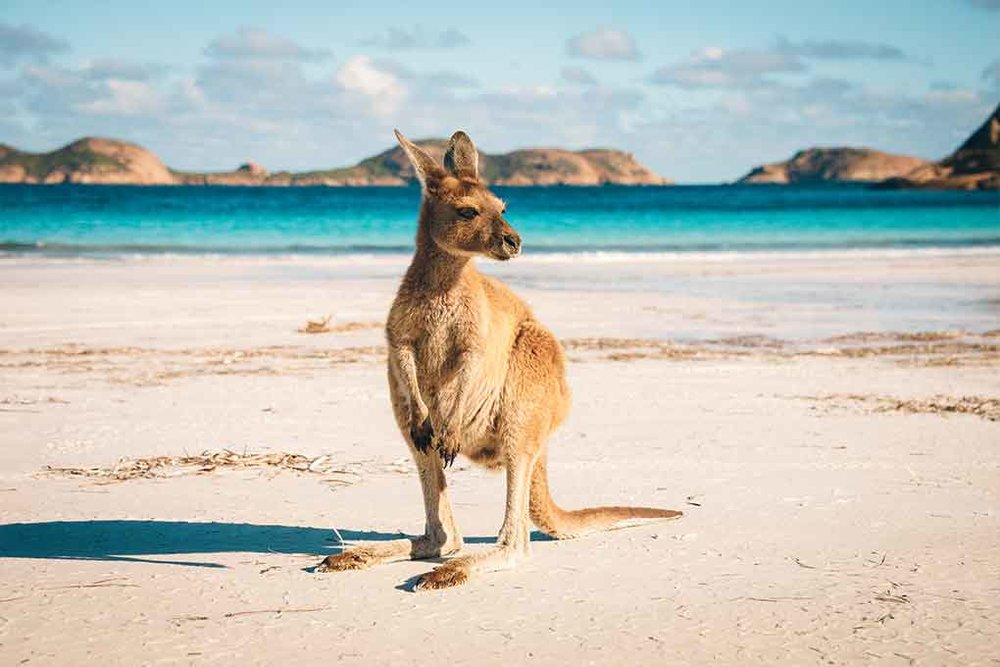 Australia-10pc.jpg