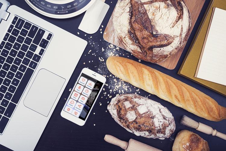 Mojo Bistro - Branding & Web Design