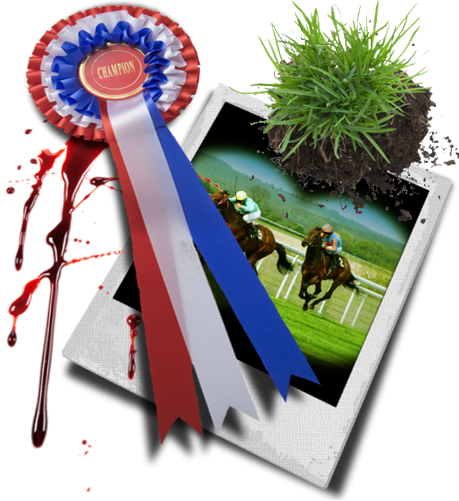 Bloody rosette and photo of horse race