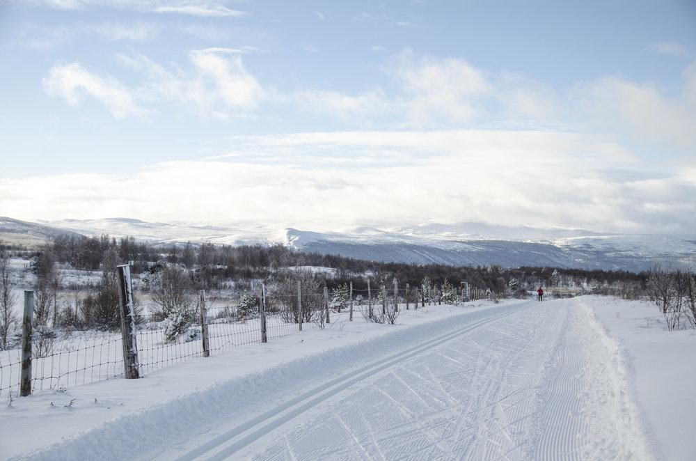 Knappe fire kilometer med mild stigning fra Dombås skistadion strekker skiløypene seg innover høyfjellet på Dovrefjell. Det er også flere mil med flotte skogsløyper i løypenettet.