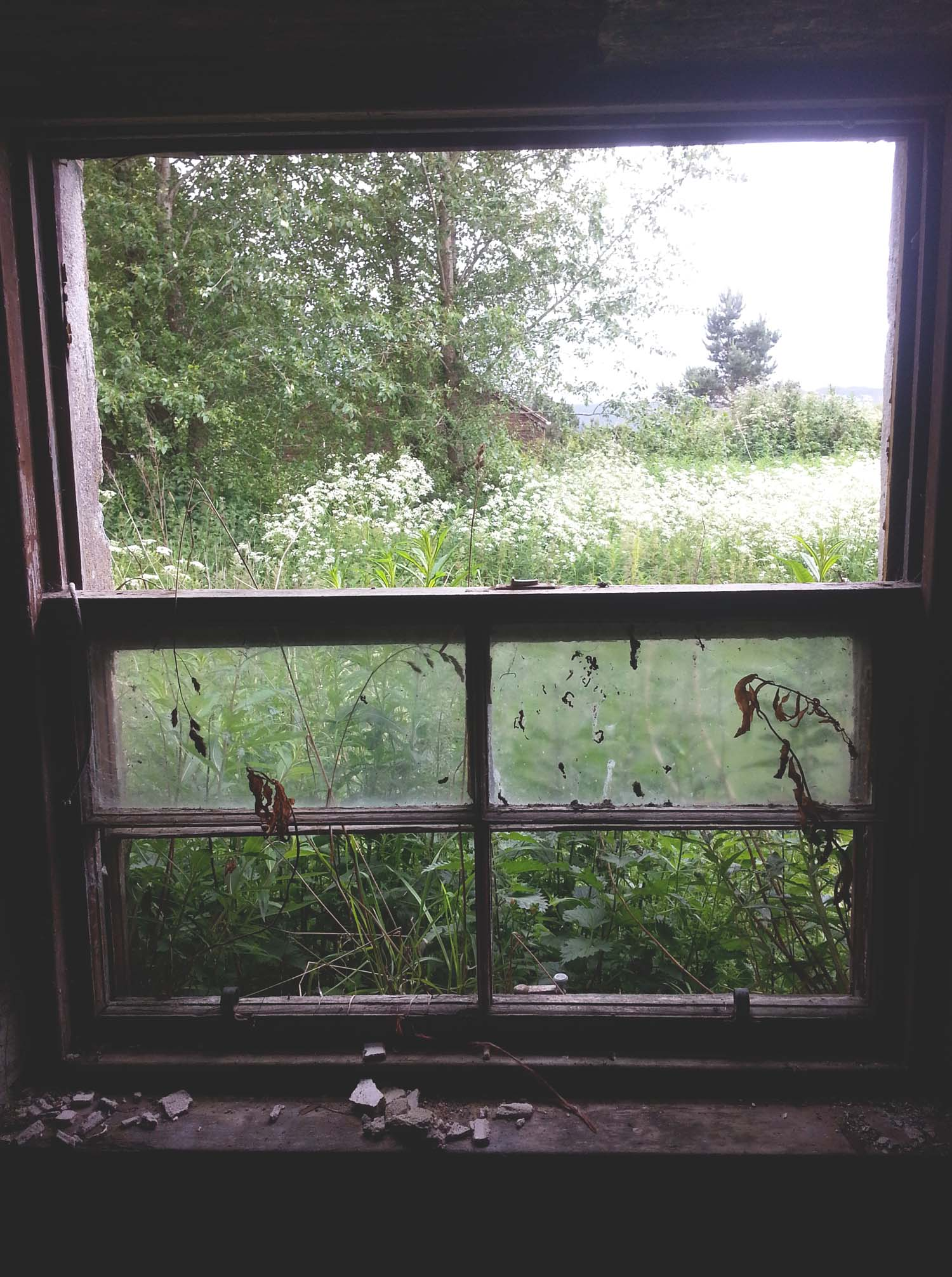 Derelict View