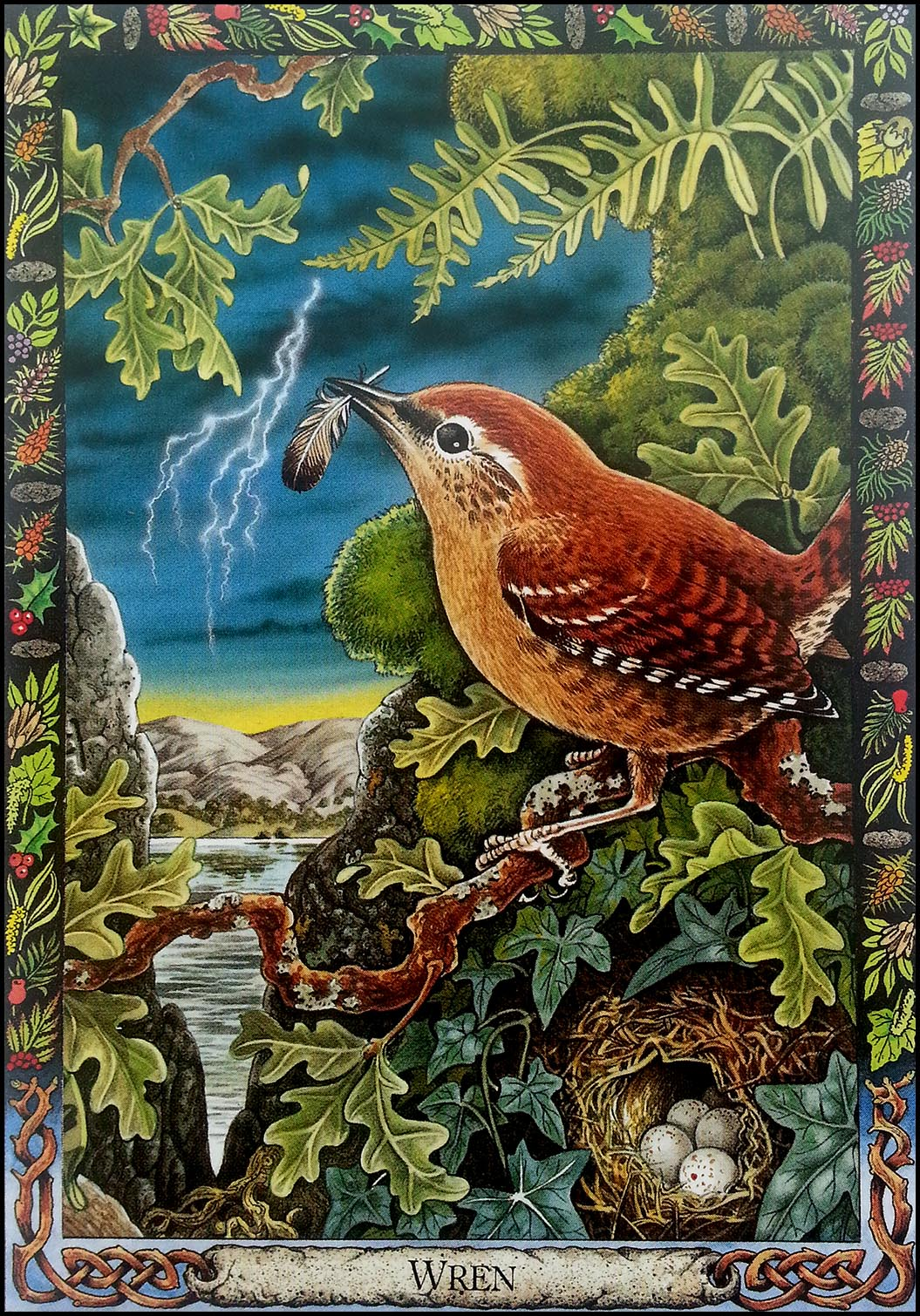 'Wren' Animal Druid Animal Oracle Card