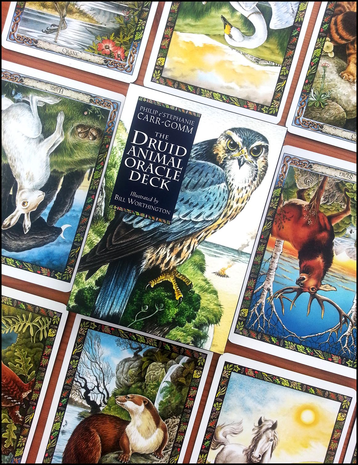 Druid Animal Oracle Cards