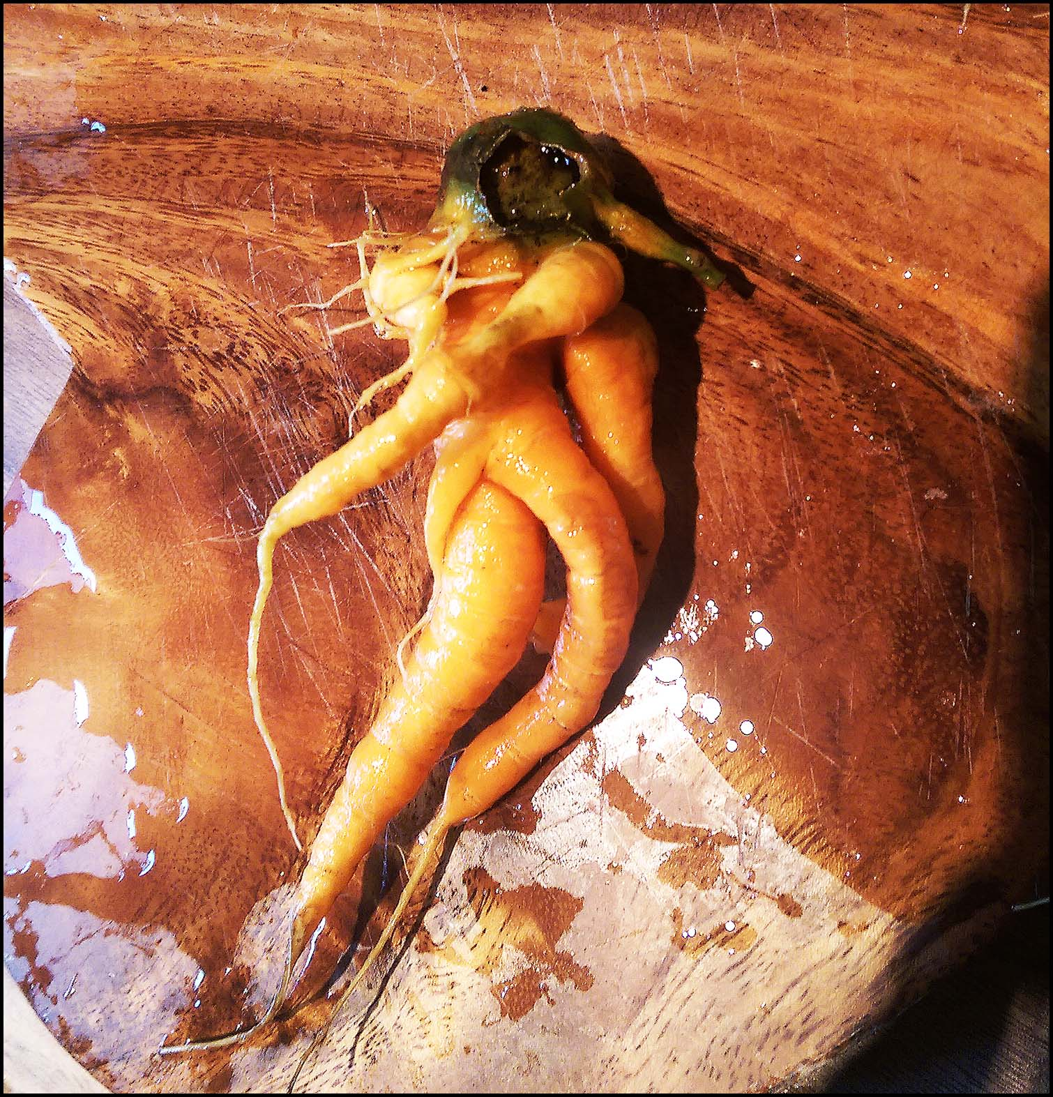 Chop, chop, peel: Carrot Astronaut