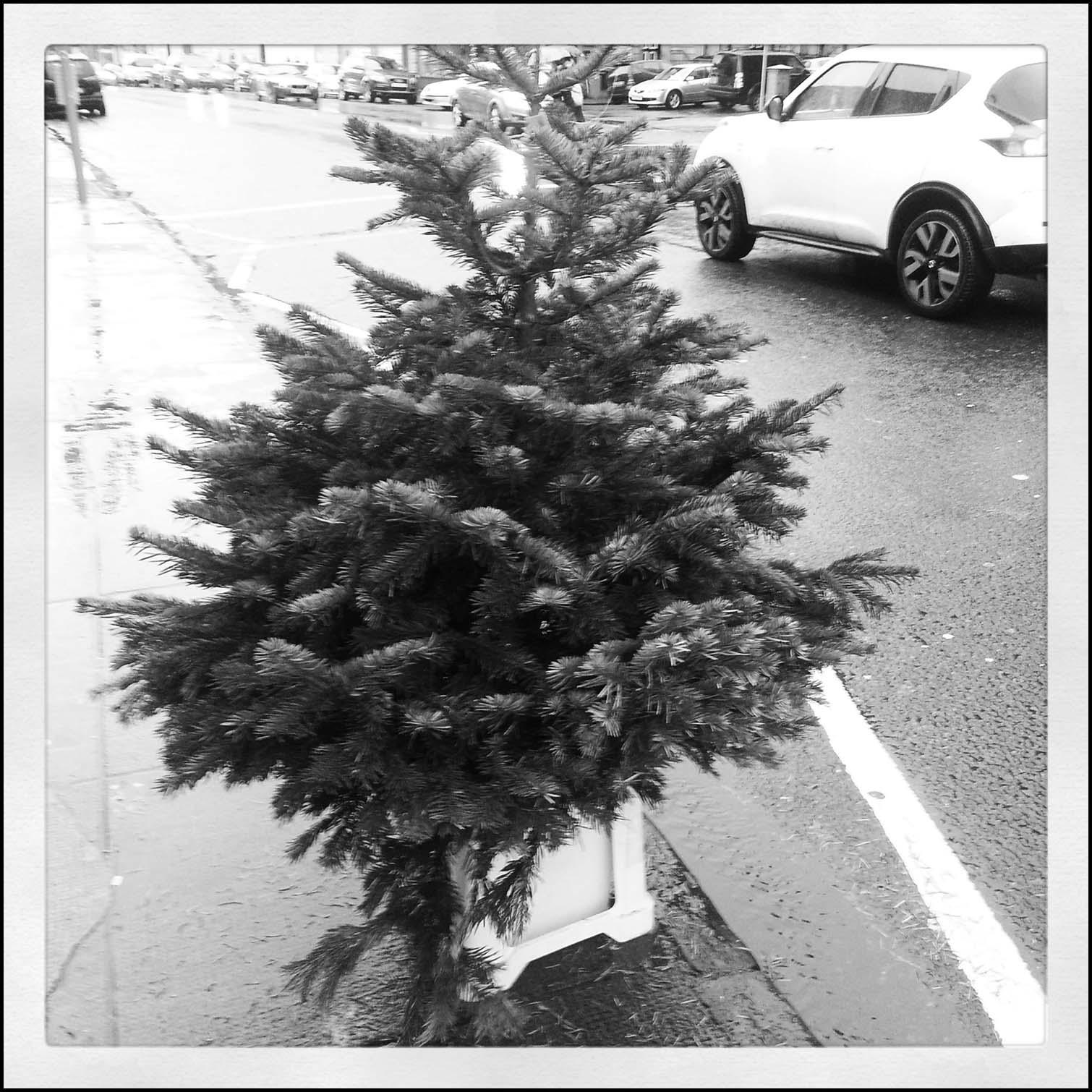 Christmas tree street scene