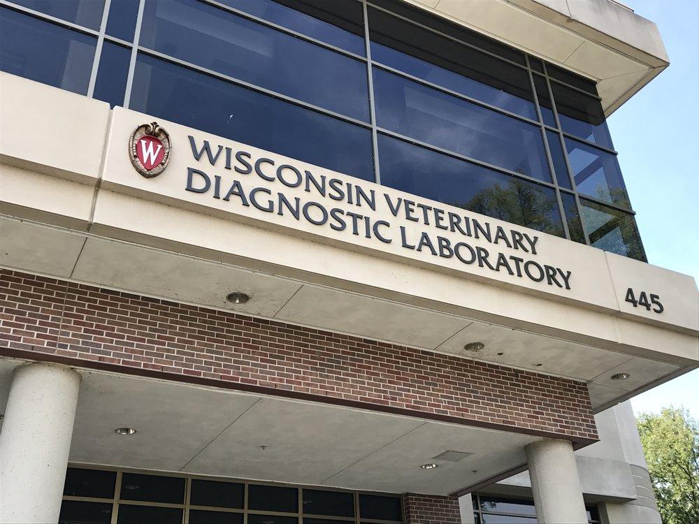 uw_vet_diag_lab.JPG