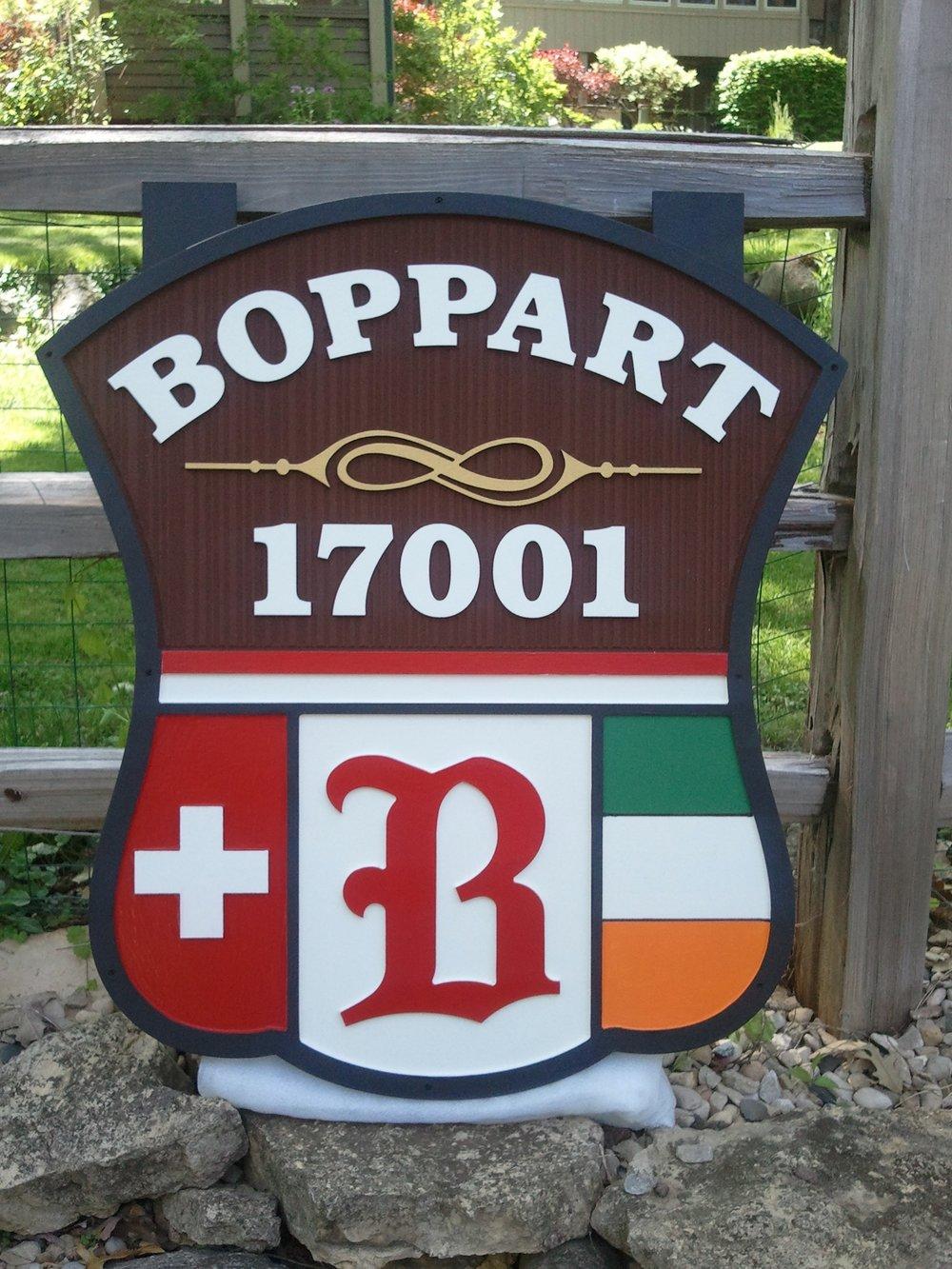 home_boppart2.jpg