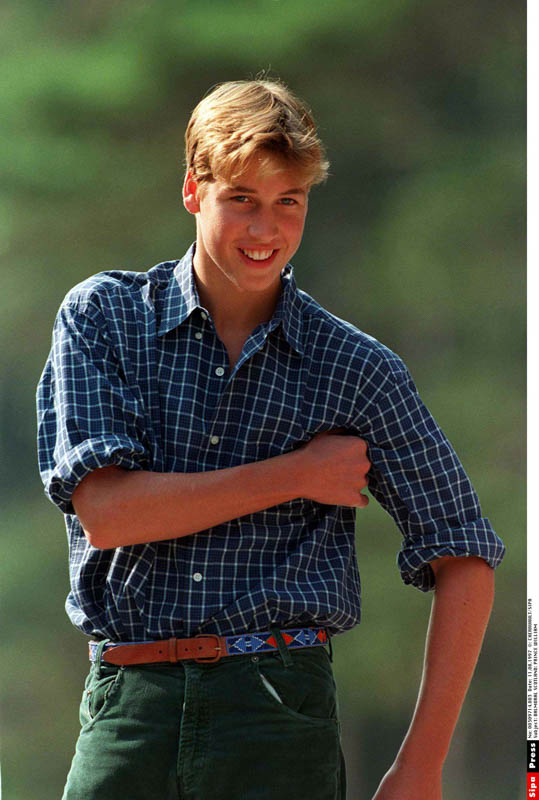 Prince William portraiture
