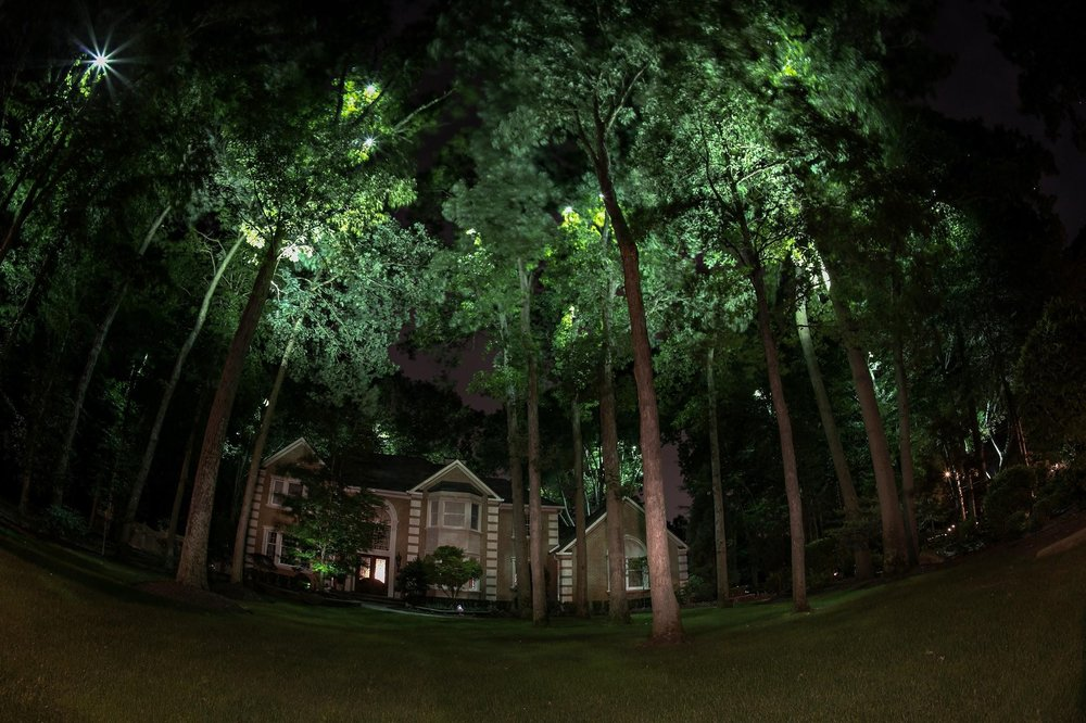 Tree lights in New Jersey, NJ