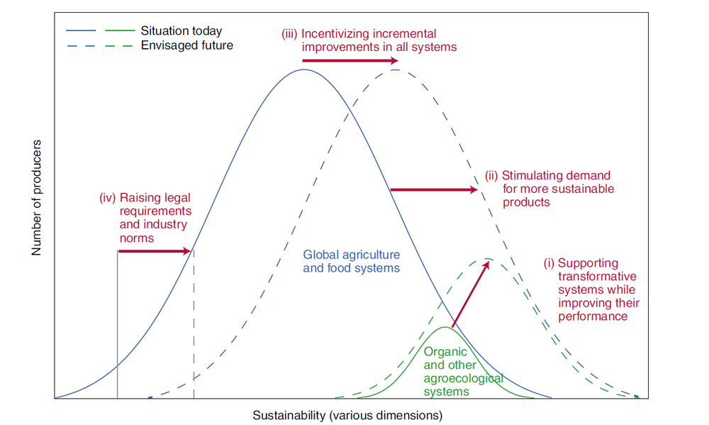 Sustainability in global agriculture driven by organic farming - Nature Sustainability