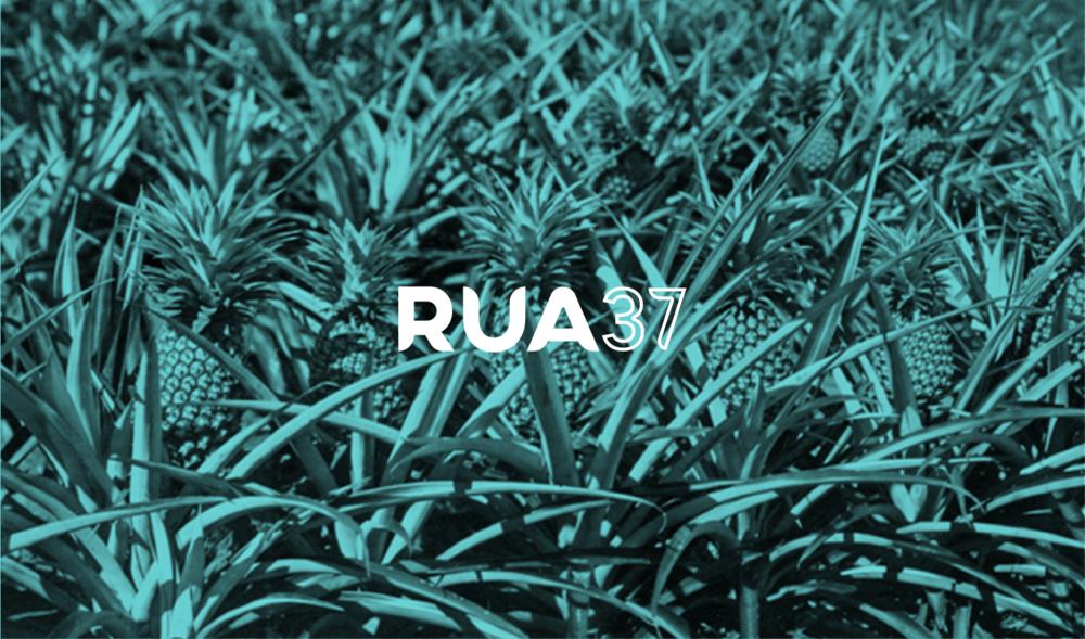 RUA-intro@2x.png