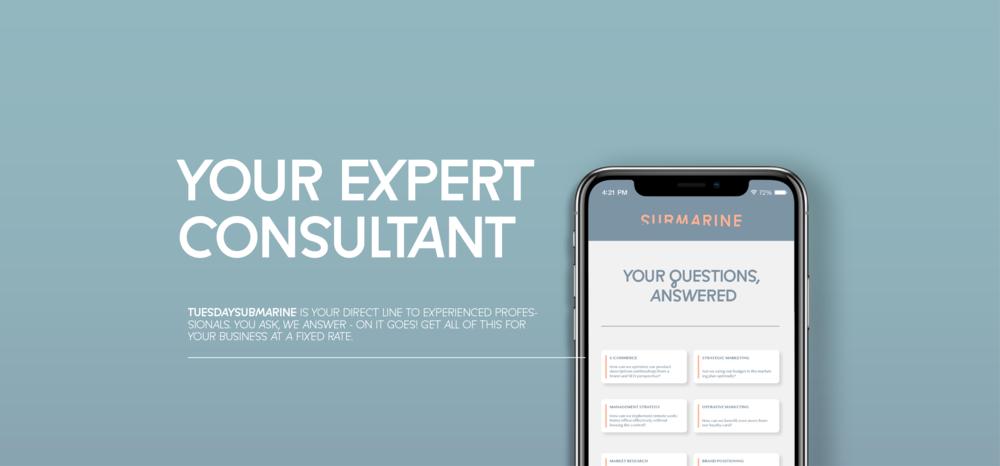 TUESDAYSubmarine-Expert-Consulting