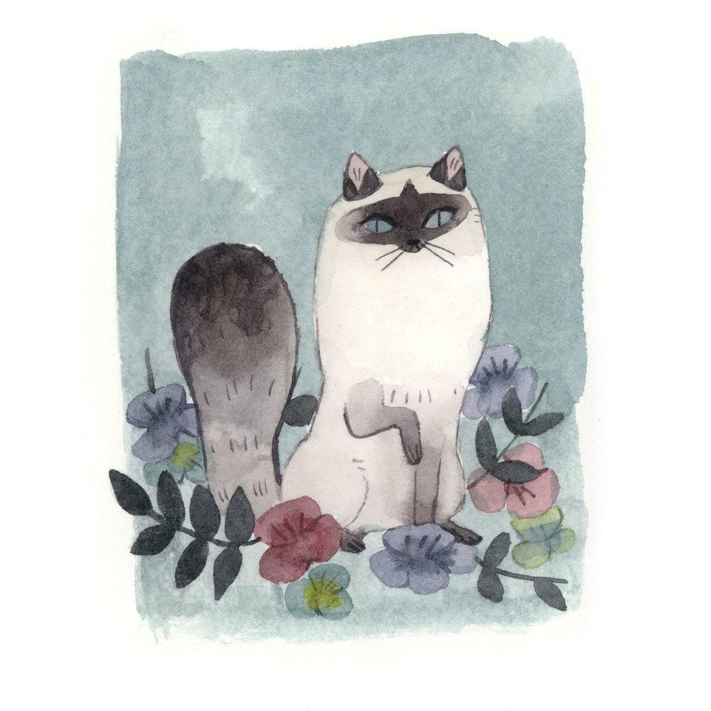 cat_flowers.jpg