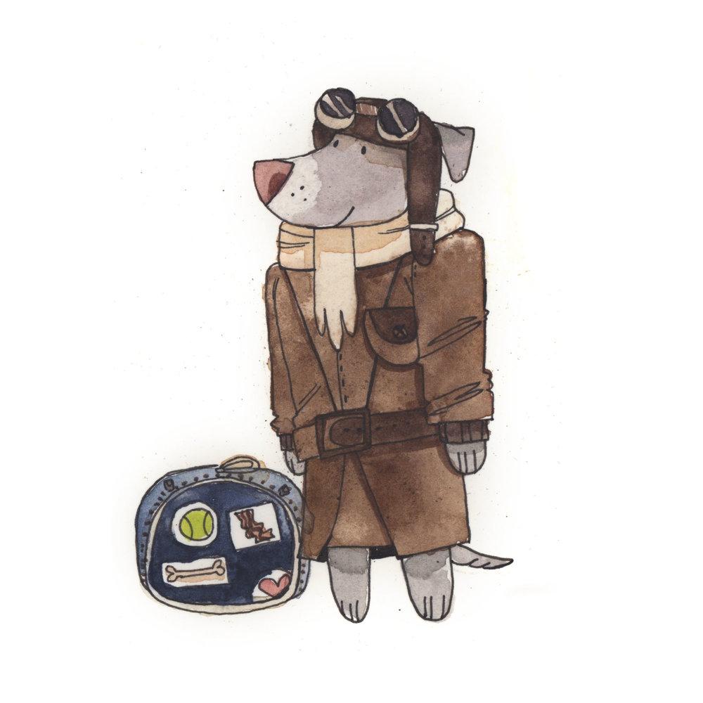 pilot_dog.jpg
