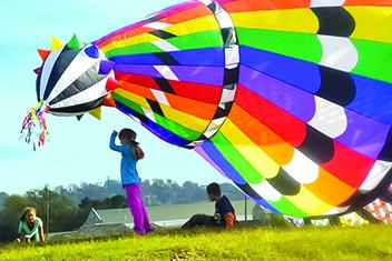 SF_kites_2.jpg