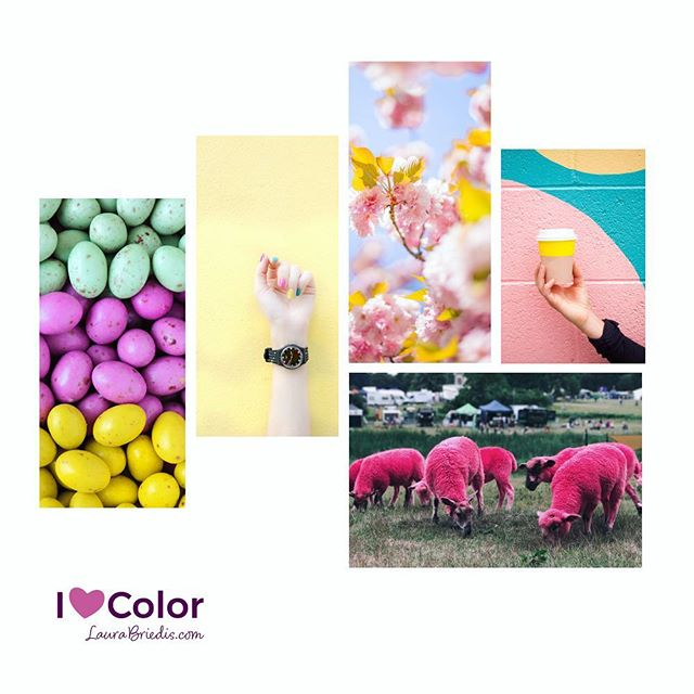 MoodBoard Monday! Project Color Board. Happy Monday!