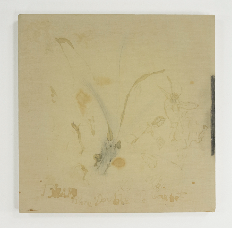 "Trial Drawing for Rose Cycle; 1950s; Graphite & unknown staining media, possibly tea on thin cotton; 11 1⁄2 x 11 1⁄2""; Item #047"