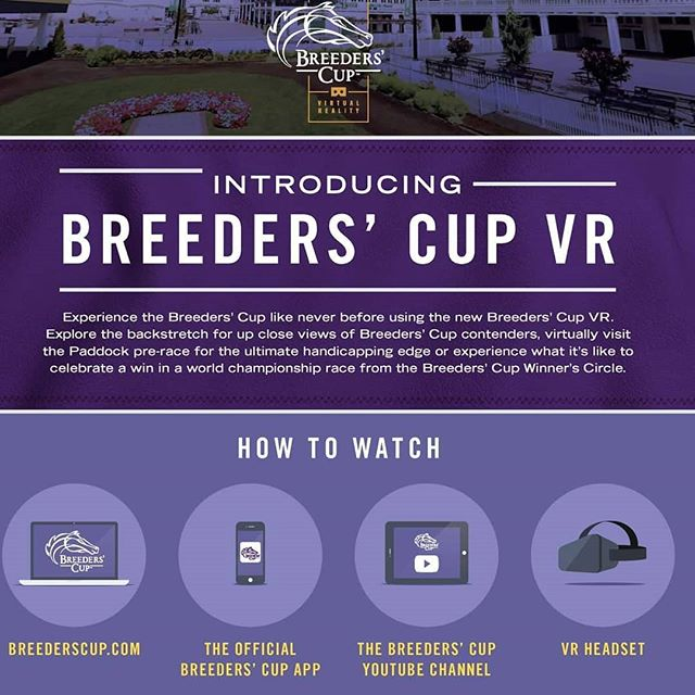 The Greenfish team is happy to be partnering with the @breederscup to produce a unique one of a kind live VR experience utilizing computer vision technology. Tune in this weekend to get an up and close look at some of the best horses in the world!  #vr #virtualreality #live360 #computervision #machinelearning #churchilldowns #louisvilleky