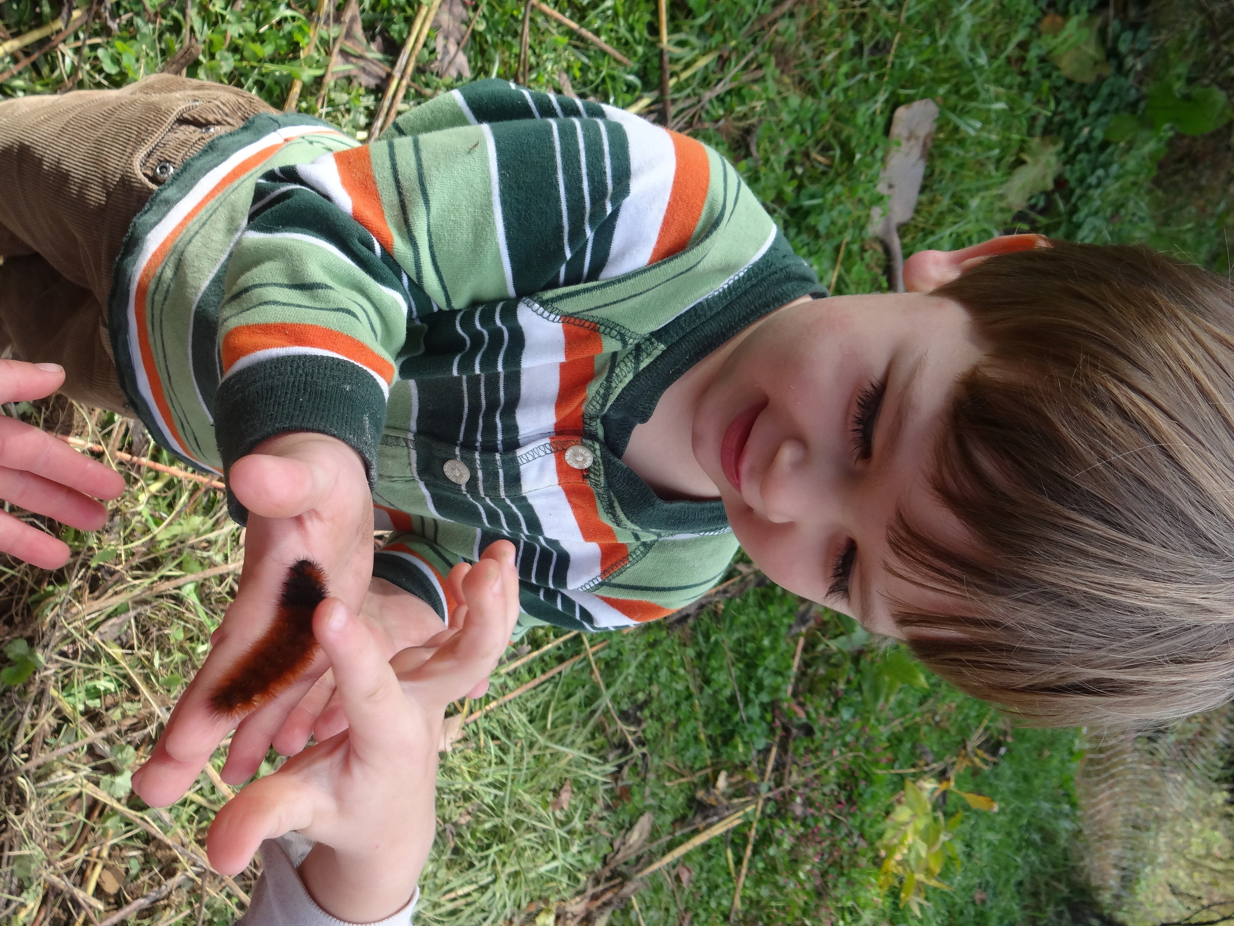 Mattias and Opal was fascinated by the Wooly Bear Caterpillar.