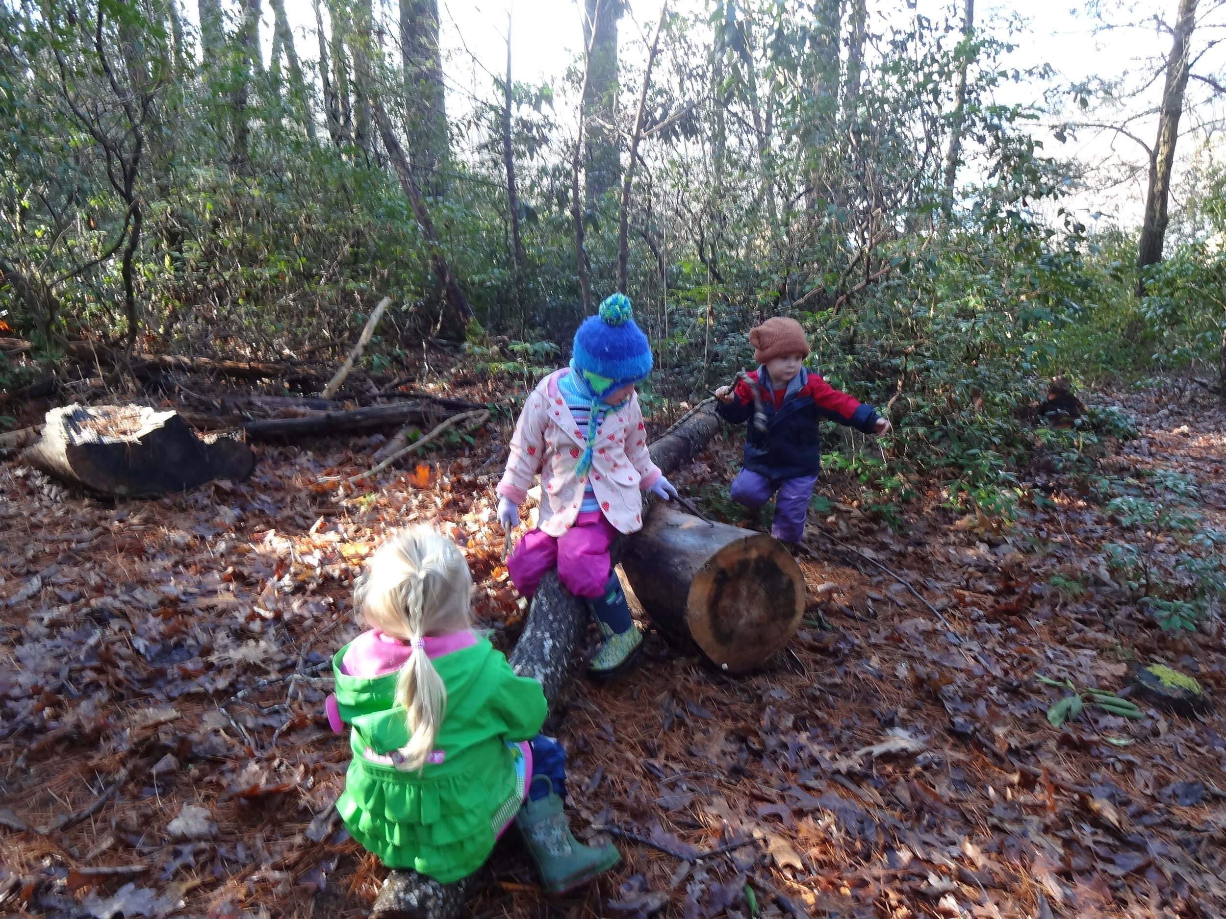 Nature See-Saw is another popular spot on our walk