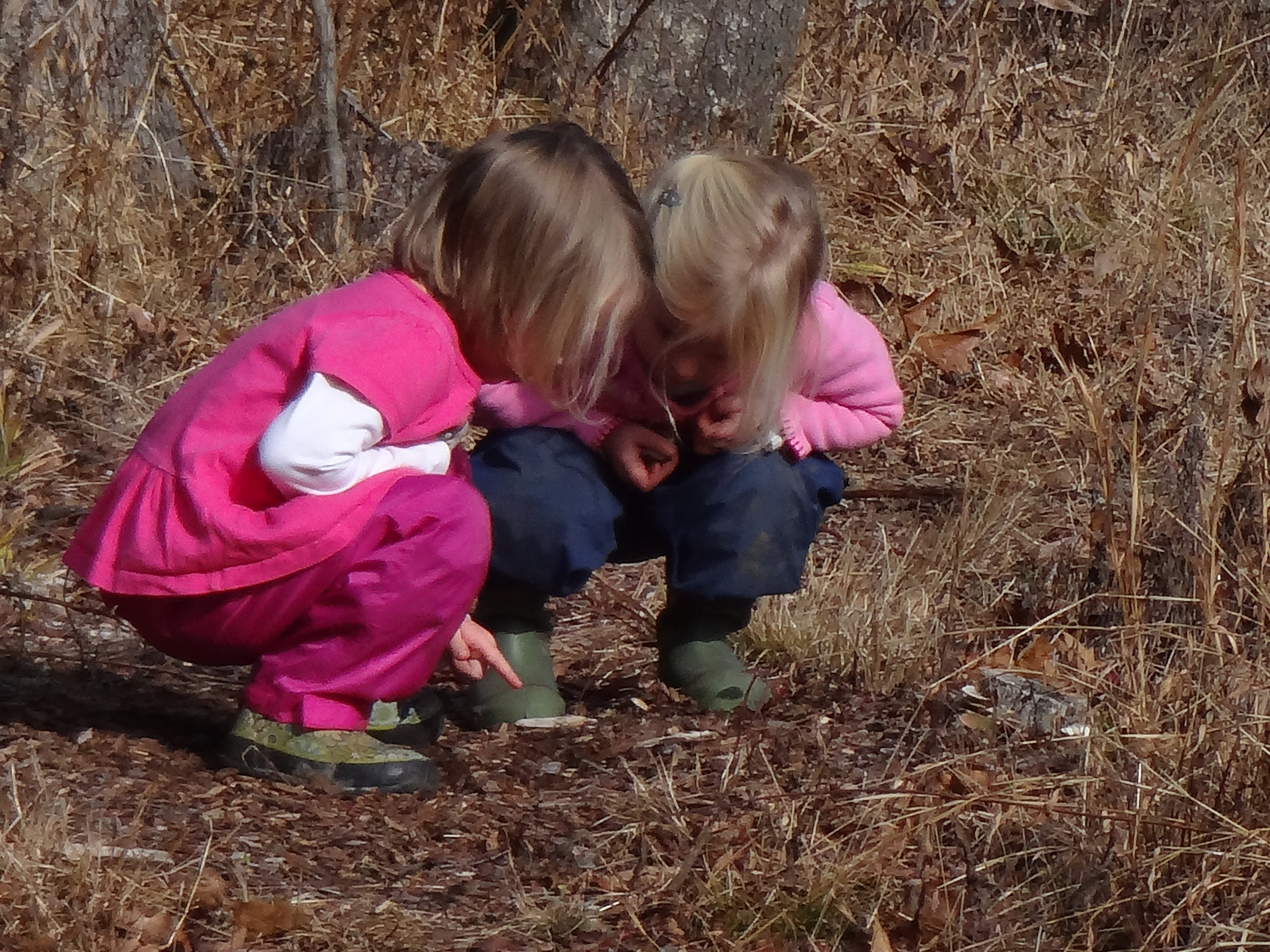 "Julia warns Opal not to put a finger into an unknown hole on the ground. ""Something can nibble your fingers!"""