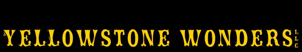 yw_final logo.png
