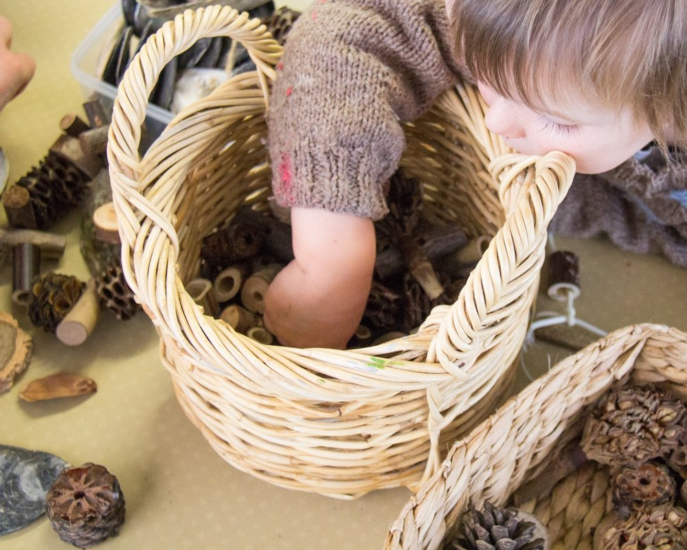 Nature Childcare Kumeu Early Childhood Centre Country Bears