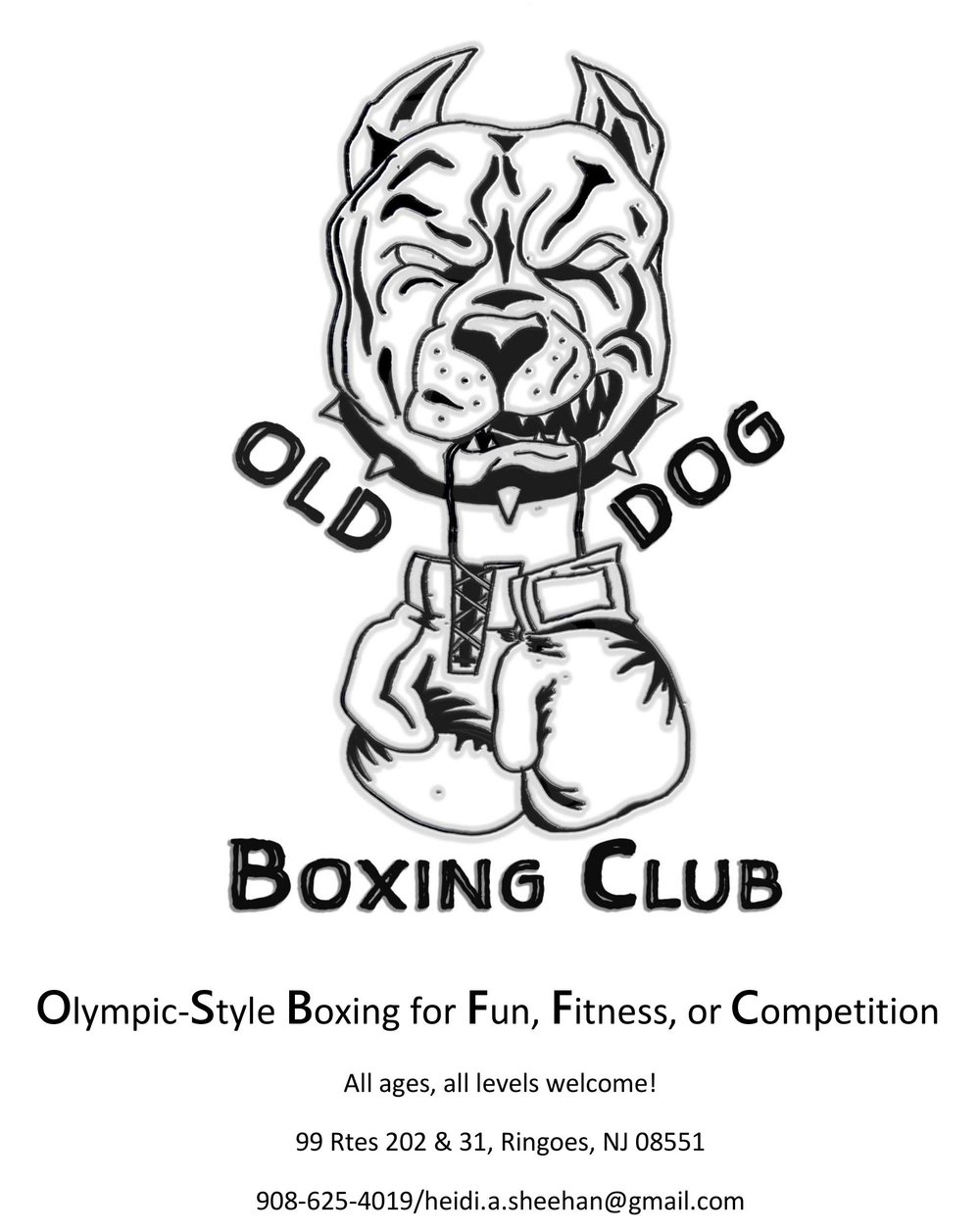 Old Dog Boxing Web.jpg