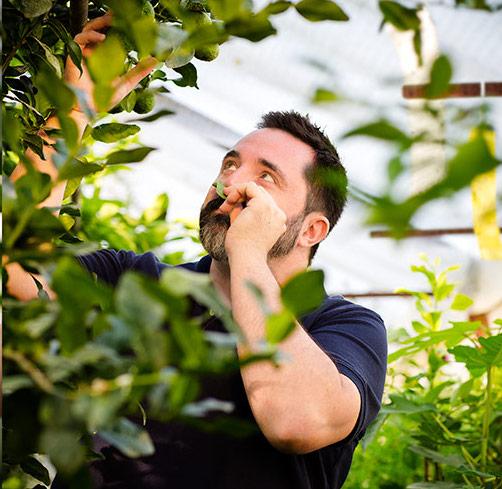 Neils Rodin (citrus grower)