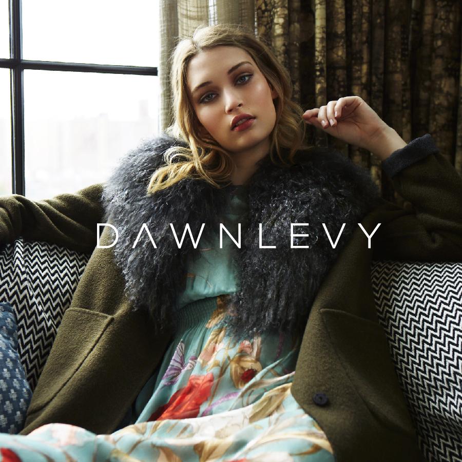 dawn levy brand icon 2.jpg
