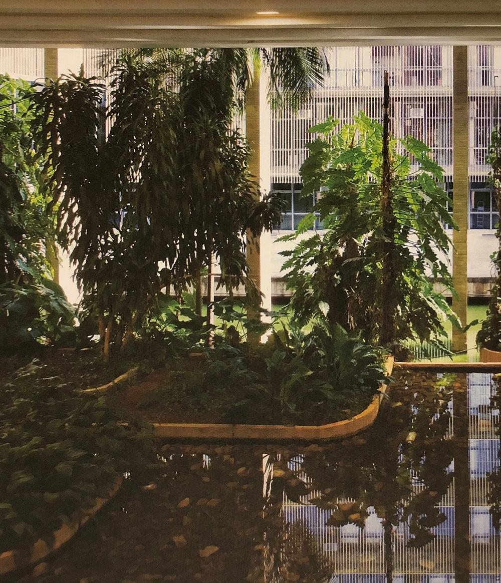 22. Roberto Burle Marx, Interior gardens, Itamaraty Palace, Ministry of Foreign Affairs, 1965, Brasília.  Roberto Burle Marx - Brazilian Modernist , 2015, The Jewish Museum, New York