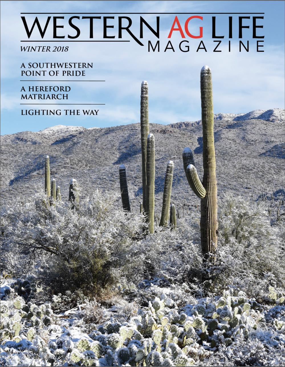 WINTER ISSUE 2018 -