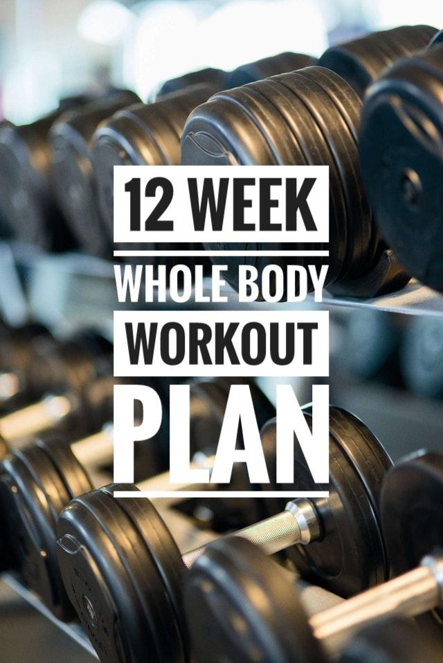 workout.jpeg