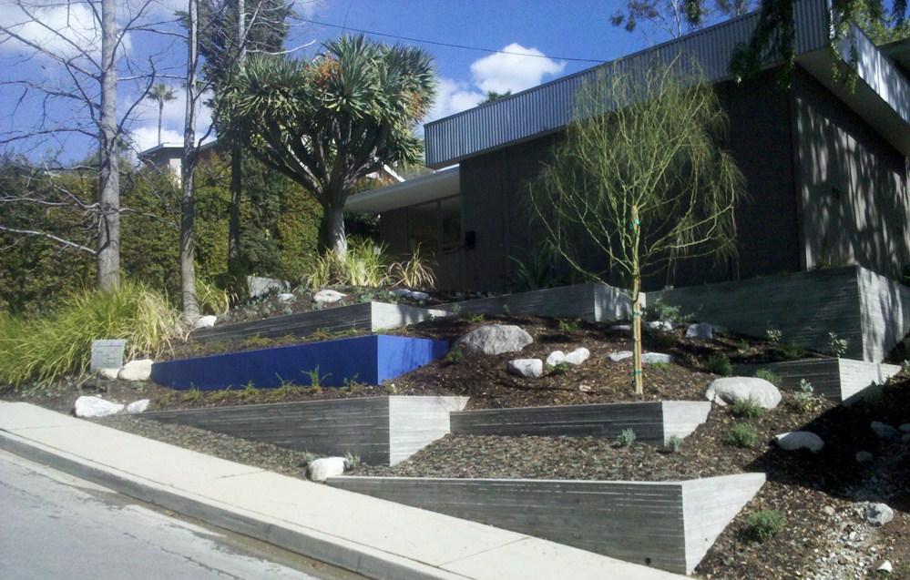 Amsler Rabe front yard