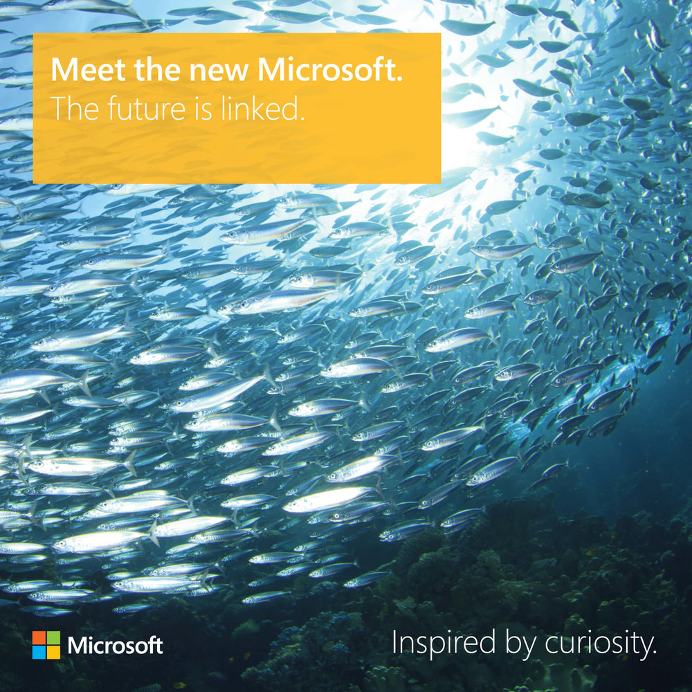 Meet the new Microsoft: The future is linked