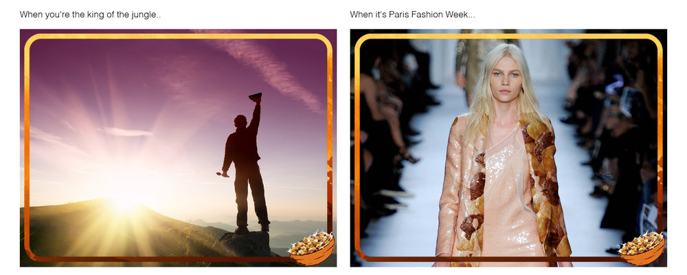 Nestlé Lion - Always-on Social Media Posts: When you're king of the jungle… When it's Paris Fashion Week...