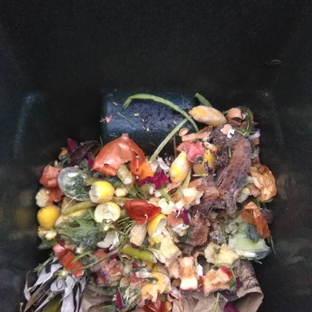 #recycleyourfoodwaste #americarecyclesday