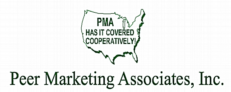 Peer Marketing Assocites INc — Peer Marketing Associates