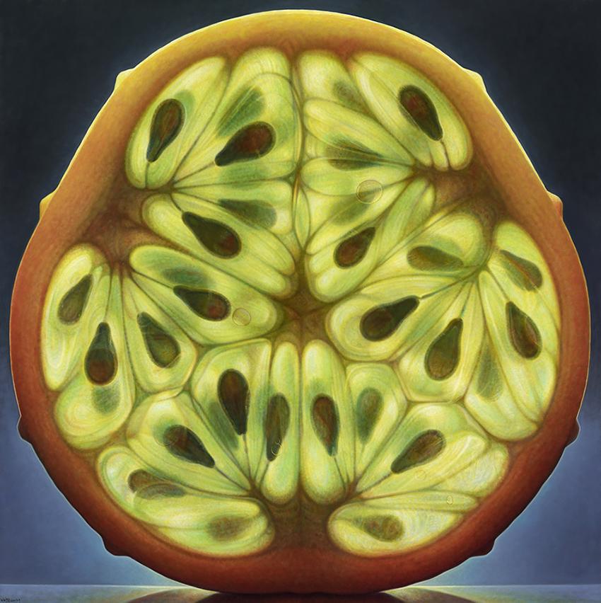 Horn Melon Series #5 (36 x 36)