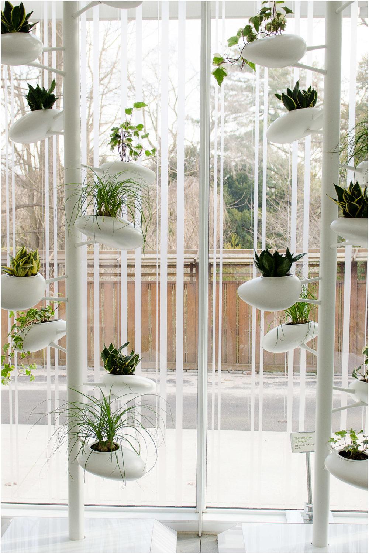 brooklyn-botanic-garden_1.jpg