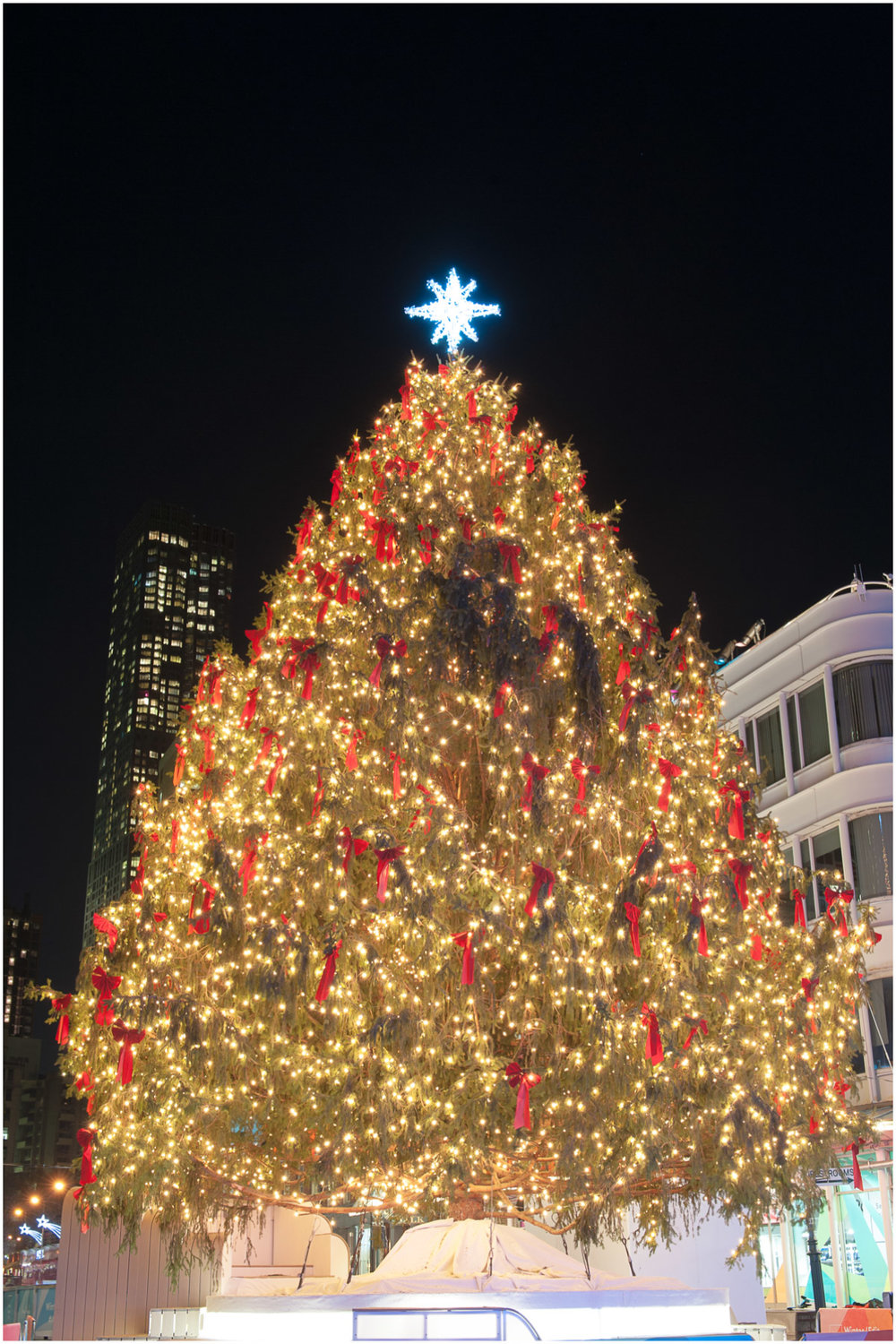 Christmas-at-South-Street-Seaport_2.jpg