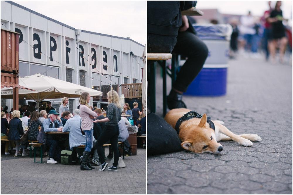 5_Copenhagen-Food-Market.jpg